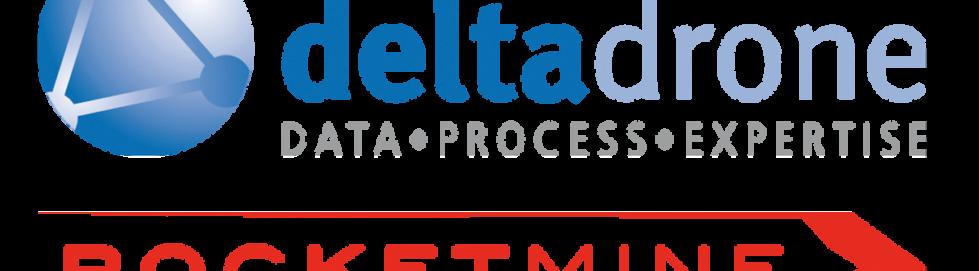 Delta Drone Logo
