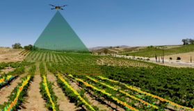 Drones Take Off In Agriculture Blog Post Image